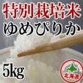 減農薬栽培 ゆめぴりか5kg