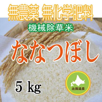 無農薬無化学肥料栽培  ななつぼし5kg 令和元年産米