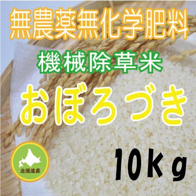 無農薬無化学肥料栽培 おぼろづき10kg 令和元年産米