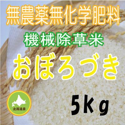 無農薬無化学肥料栽培 おぼろづき5kg 令和元年産米