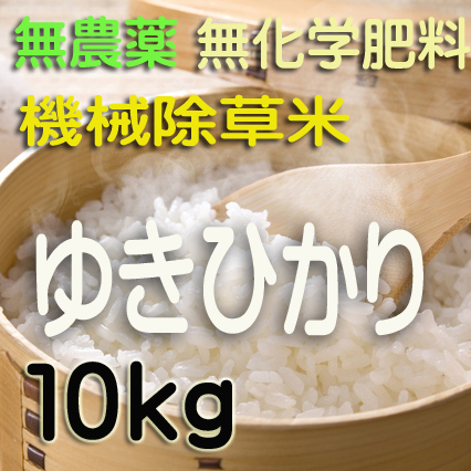 無農薬無化学肥料栽培 ゆきひかり10kg 令和元年産米