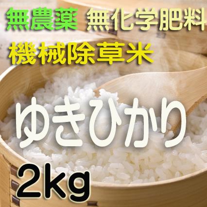 無農薬無化学肥料栽培 ゆきひかり2kg 令和元年産米