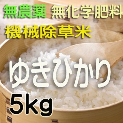 無農薬無化学肥料栽培 ゆきひかり5kg 令和2年産米