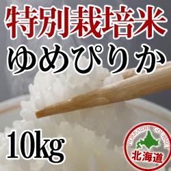 減農薬栽培 ゆめぴりか10kg