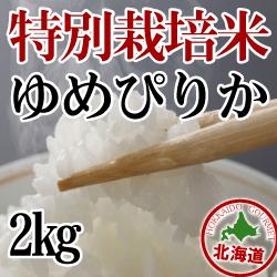 減農薬栽培 ゆめぴりか2kg 令和元年産米