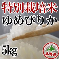 【北海道産】減農薬栽培 ゆめぴりか5kg 令和元年産米