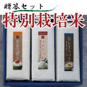 特別栽培米贈答セット