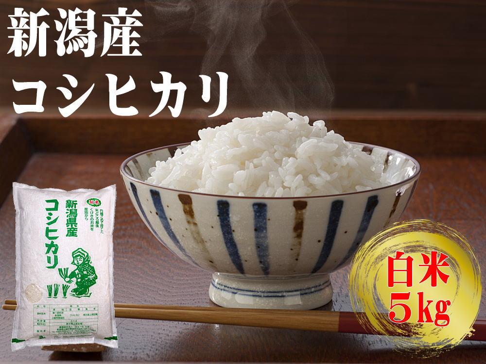 農家直送!新潟産コシヒカリ 白米 5kgの販売