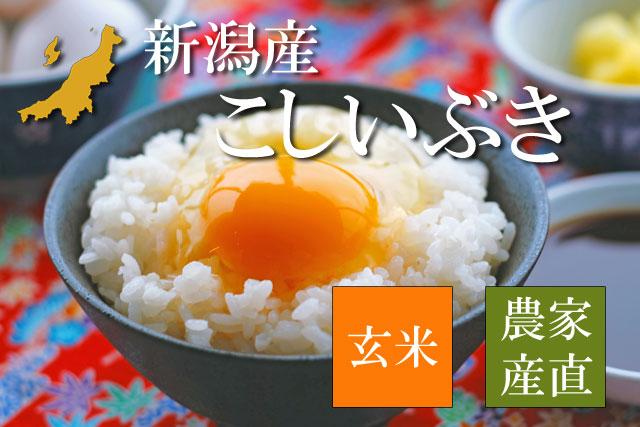 新潟産こしいぶき 玄米