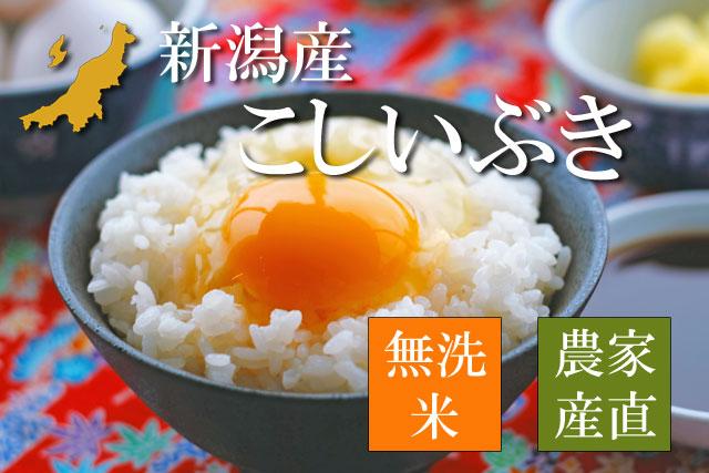 新潟産こしいぶき 無洗米