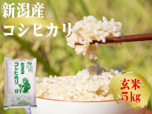 農家直送!新潟産コシヒカリ 玄米 5kgの販売