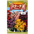 ウタネ 花の種/種子 スターチス 切花用ミックス 種 (レターパックライト発送 全国一律370円)05119