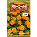 ウタネ 花の種/種子 マリーゴールド フレンチ系オレンジ 種 (レターパックライト発送 全国一律370円)30852