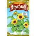 ウタネ 花の種/種子 ひまわり 赤ちゃんひまわり 種 (レターパックライト発送 全国一律370円)05102