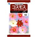 ウタネ 花の種/種子 コスモス センセーションミックス 種 (レターパックライト発送 全国一律370円)31938