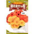 ウタネ 花の種/種子 きんせんか 切花金せん花 混合 種 (レターパックライト発送 全国一律370円)90030