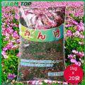 【1kg/990円】景観用緑肥  れんげ 種 1kg×20袋セット【景観用緑肥】