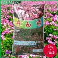 【1kg/1118円】景観用緑肥  れんげ 種 1kg×10袋セット【景観用緑肥】