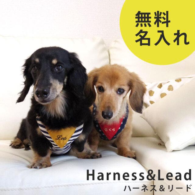 名入れ 犬 ハーネス リード