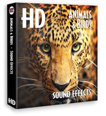 著作権フリー効果音素材動物&鳥効果音ライブラリ・24bit96KHz#年末セール