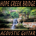 AV665 ホープクリークブリッジ・アコースティックギター#
