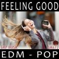 著作権フリー音楽CD-ROM AV672 フィーリンググッド/EDM#ベストセラー2018