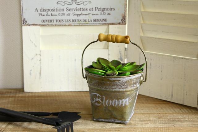 Bloom バスケットS