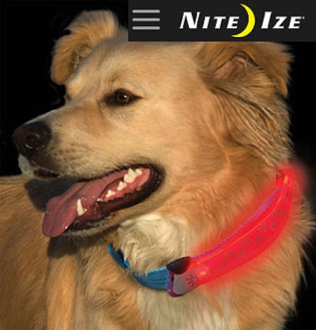 ナイトアイズ(USA) ドッグカラーカバー ペット用 E20000 セーフティーLEDライト首輪カバー NITE IZE (USA) Dog Collar Cover