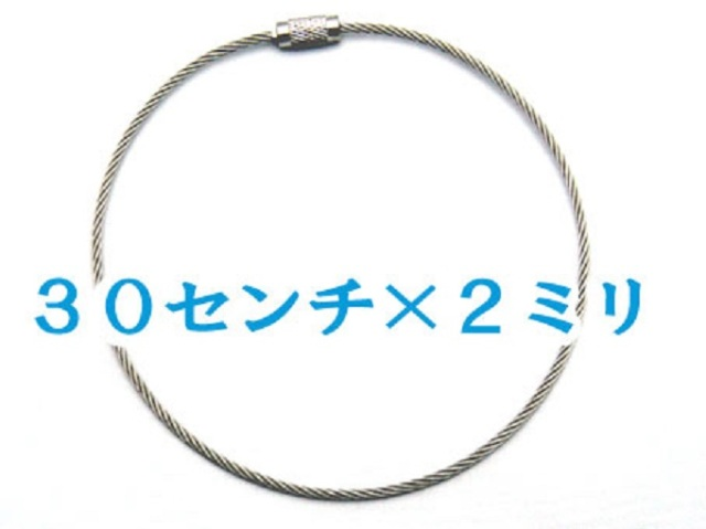 ネジ式ワイヤーリング ステンレス製 ワイヤー太さ2.0mm 長さ、30センチ。カラーはシルバーです。