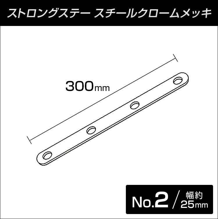 ストロングステー No.2 ストレート300L 【メール便可】