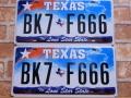USED  ペアプレート テキサスw TX