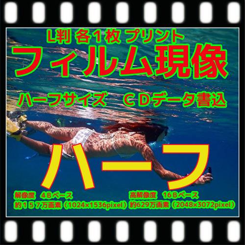 ハーフフィルム現像+L版各1枚プリント+Wインデックス+CD書込(画像の荒い4B)