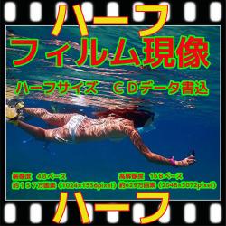 ハーフフィルム現像+Wインデックス+CD書き込み(画像の荒い解像度4B)