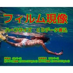 ハーフフィルム現像+Wインデックス+CD書き込み(解像度4B)