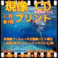 35ミリフィルム現像+L版各1枚プリント+Wインデックス+CD書込(高解像度16B)