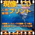 35ミリフィルム現像+L版各1枚プリント+Wインデックス+CD書込(画像の荒い解像度4B)