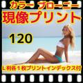 ブローニーカラーフィルム現像+各1枚プリント+インデックス