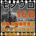 モノクロフィルム現像+Wインデックス+CD書き込み(高解像度16B)35/120共通(B&W現像)