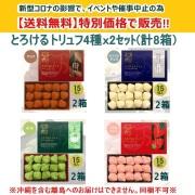 00904【送料無料】とろけるトリュフ特別セット(4種x2) 計8箱