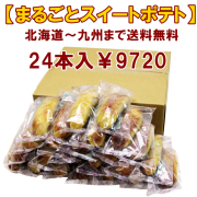 10109 【送料無料】まるごとスイートポテト 24本入 ※特別価格