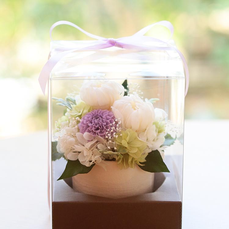 枯れない常花 お供えや仏花としておすすめ!ケース付き~紫苑(しおん)~
