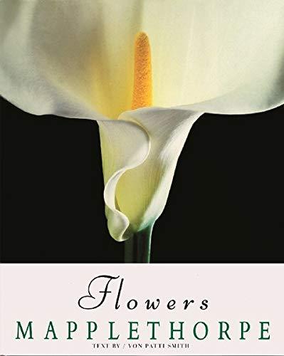 【古本】ロバート・メイプルソープ写真集: ROBERT MAPPLETHORPE: FLOWERS