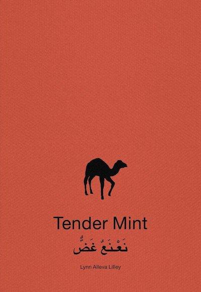 リン・アレヴァ・リリー写真集: LYNN ALLEVA LILLEY: TENDER MINT