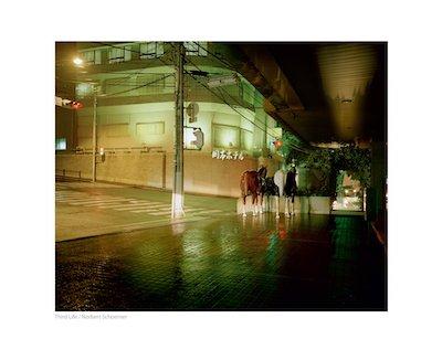 【古本】ノーバート・ショルナー写真集: NORBERT SCHOERNER: THIRD LIFE