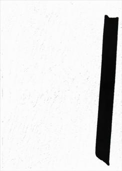 ステファン・ケッペル写真集: STEPHAN KEPPEL: FLAT FINISH (New York)