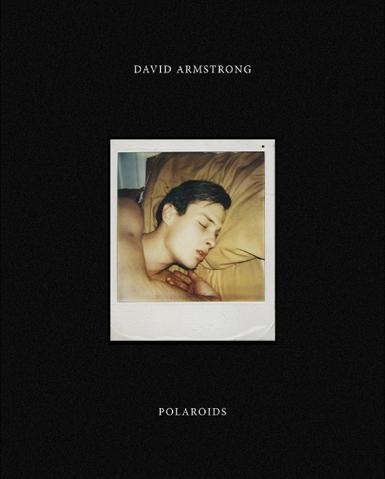 デイヴィット・アームストロング写真集: DAVID ARMSTRONG: POLAROIDS