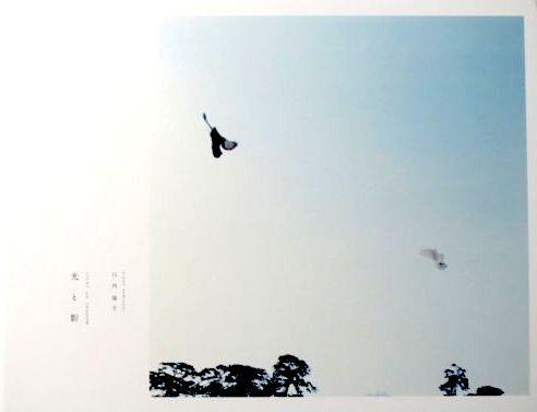 【古本】川内倫子写真集 : 光と影 : RINKO KAWAUCHI : LIGHT AND SHADOW