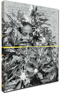 【古本】エリック・ゴッテスマン写真集: ERIC GOTTESMAN: SUDDEN FLOWERS【サイン入】