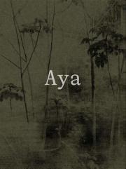 ヤン・グロス & オーギュヌ・エスカンドン写真集: YANN GROSS & ARGUINE ESCANDON: AYA