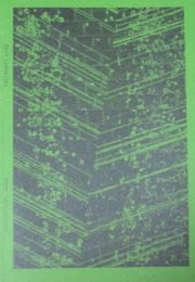 バート・ローデヴァイクス作品集 : BART LODEWIJKS : THE FLANDERS PENINSULA